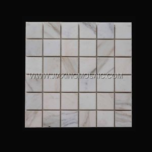 Calacatta Gold Polished Marble Square 2 x 2